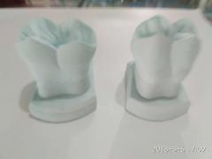 石膏模型6倍特惠产品